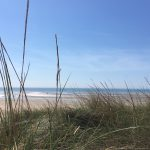 The marram grass and beautiful view to the sea from the dunes at Camber Sands.