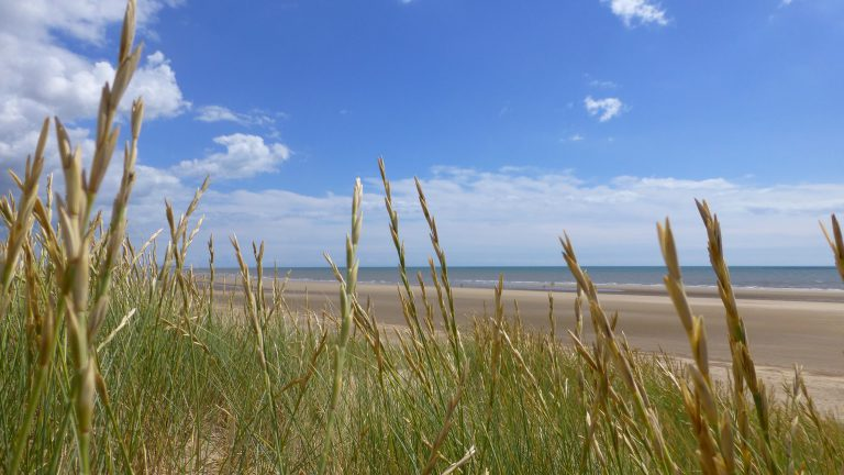 View through the marram grass onto Camber Sands beach.