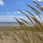 Camber Sand beach with marram grass.