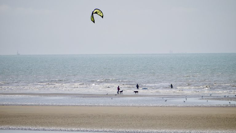 Kitesurfers and dog walkers on Camber Sands beach