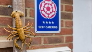 Rock Lobster holiday cottage holds a 4*Gold VisitEngland award