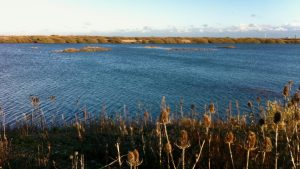 View across the lake at Dungeness RSPB Reserve