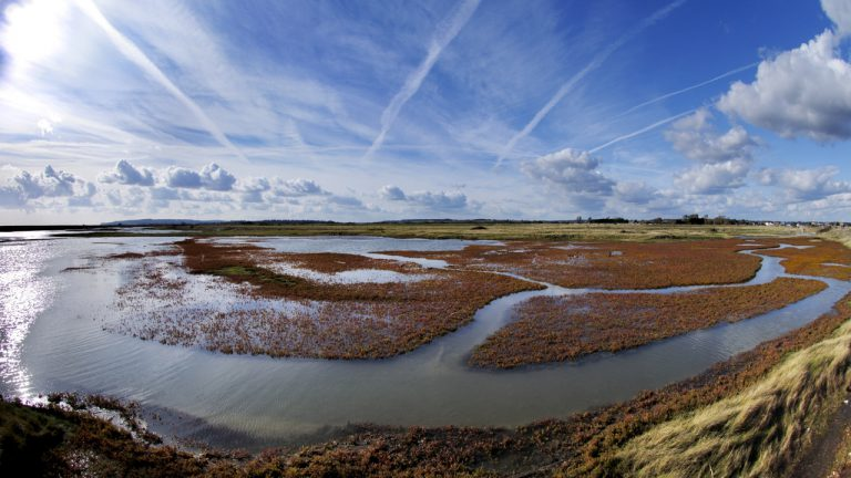 View across a bird watching lake and marshland at Rye Harbour Nature Reserve