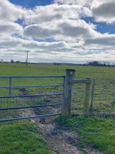 Path through gate