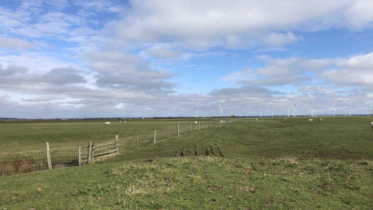 Views across the marsh towards the wind turbines